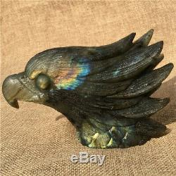 1.29LB Natural Labradorite eagle skull crystal spectrolite hand carved OK2205-4