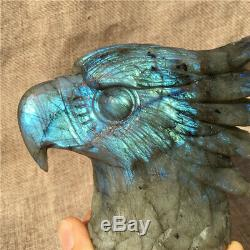 1.38LB Natural Labradorite eagle skull crystal spectrolite hand carved OK2198