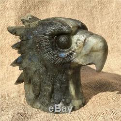 1.38LB Natural Labradorite eagle skull crystal spectrolite hand carved OK2198-1