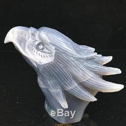 1.3LB Natural Geode Agate quartz eagle skull hand Carved crystal MK361-DFA-16