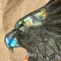 1.45LB Natural Labradorite eagle skull crystal spectrolite hand carved