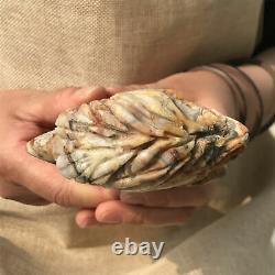 1.49LB Natural Crazy agate Eagle's Head Skull Quartz Crystal Hand Carved XK401