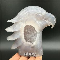 1.65LB Natural Geode Agate eagle skull quartz hand Carved crystal DK298-EAA-wh