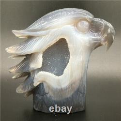 1.91LB Natural agate geode Quartz hand carved crystal eagle head Healing. DK300