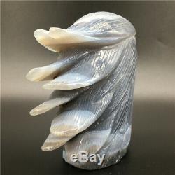 2.04LB Natural Geode Agate quartz eagle skull hand Carved crystal healing DK293