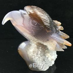 2.23LB Natural Agate geode quartz eagle skull Hand Carved Crystal Healing mk391