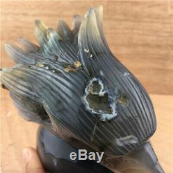 2.5LB Natural Agate geode quartz eagle skull point Hand Carved Crystal so2124