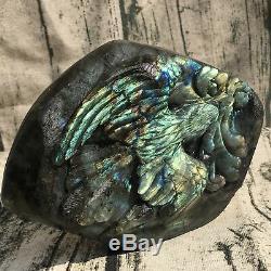 3.32LB Natural Labradorite eagle skull crystal spectrolite hand carved OK222