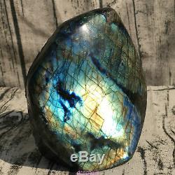 3.32LB Natural Labradorite eagle skull crystal spectrolite hand carved OK222-2