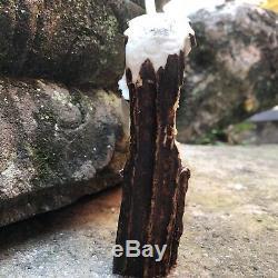 3D Bear & American Eagle Hand Carved Genuine Antler Horn Bone Cane Handle USA