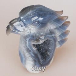 4.9 1.5LB Natural Geode Agate Quartz Crystal Hand Carved Eagle Head Home Decor