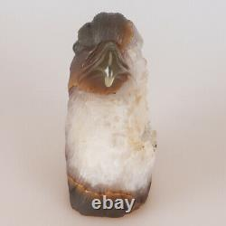 4.9 Natural Geode Agate Quartz Crystal Hand Carved Eagle Head Animal 789g