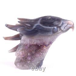4 in Natural Geode Agate Amethyst Eagle skull hand Carved crystal, Reiki Healing