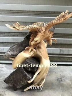60 cm Chinese Thuja sutchuenensis wood eagle stretched its wings Bird sculpture