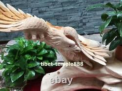 69 cm Chinese Thuja sutchuenensis Handwork wood Lanneret Hawk Eagle sculpture