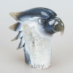 757g 4.7 Natural Geode Agate Quartz Crystal Hand Carved Eagle Head Carving