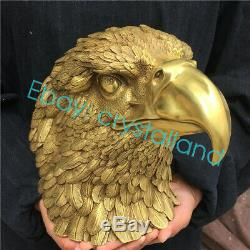 9.85LB Hand-carved eagle skull head Furnishing articles ornaments OT1949-EIA