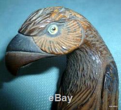 Antique Black Forest Hand Carved Wood Eagle Bird Handle Cane Umbrella