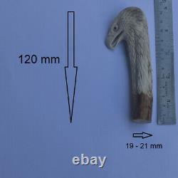 Eagle Head Carving 120mm Length Handle H1047 in Antler Bali Hand Carved