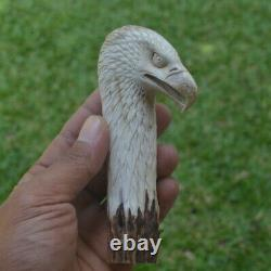 Eagle Head Carving 127mm Length Handle H997 in Antler Bali Hand Carved