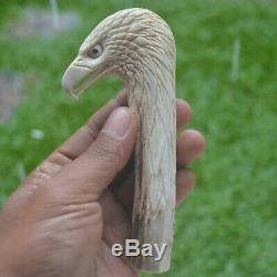 Eagle Head Carving 137mm Length Handle H896 in Antler Bali Hand Carved