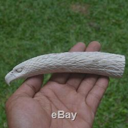 Eagle Head Carving 147mm Length Handle H938 in Antler Bali Hand Carved