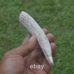 Eagle Head Carving 150mm Length Handle H970 in Antler Bali Hand Carved