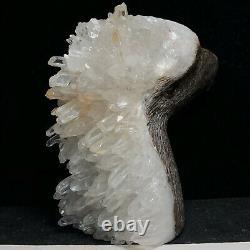 Natural crystal cluster quartz mineral specimen, hand-carved eagle collection