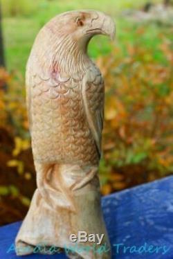 Rustic Eagle Hawk Bird of Prey Sculpture Mushroom Wood carving Statue Bali art
