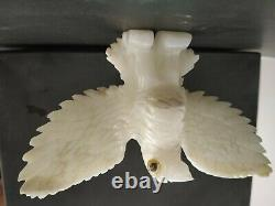 White Agate Natural Gemstone Hand Made Carving With Open Wings Beautiful Eagle